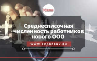 Сведения о среднесписочной численности работников в РФ