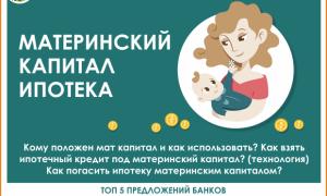 Можно ли взять ипотеку под материнский капитал