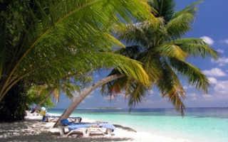 Как написать заявление на отпуск за свой счет