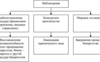 Этапы банкротства юридического лица в РФ