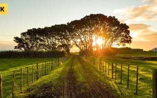 Как можно быстро продать участок земли