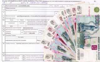 Как можно получить кадастровый паспорт земельного участка
