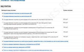 Особенности квитанции об оплате госпошлины за регистрацию ИП