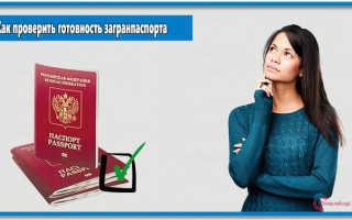 Проверка готовности заграничного паспорта нового поколения онлайн в РФ