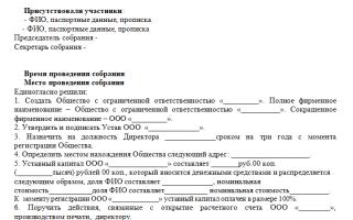 Как выглядит образец протокол собрания учредителей ООО