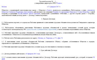 Как выглядит образец трудового договора с директором ООО