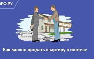 Можно ли продать квартиру, купленную в ипотеку в РФ