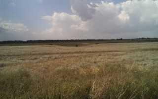Как выглядит образец акта приема-передачи земельного участка