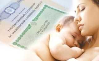 Что нужно знать про материнский капитал в городе Грозный и республике Чечня