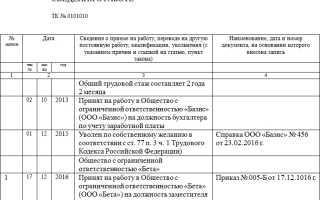 Образец заполнения дубликата трудовой книжки в России