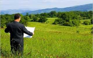Порядок приватизации земельного участка в садоводстве