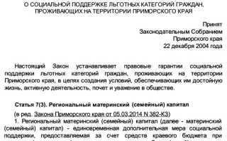 Материнский (семейный) капитал в Приморском крае – размер, условия получения и на что можно потратить