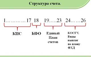 Расшифровка КОСГУ 226 в России